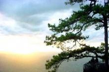 เคล็ดลับน่ารู้ถ่ายภาพให้สวยเวลาไปเที่ยวดอยหรือภู