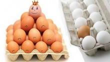 จะกินไข่ไก่หรือไข่เป็ดดี ?