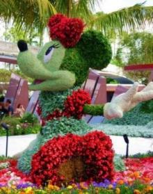 สวนดอกไม้ ~ ของดิสนีย์ !!!