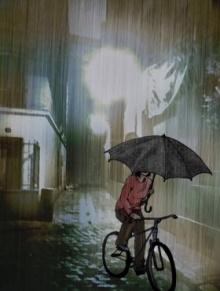 ร่มไม่ได้มีไว้แค่กันฝน