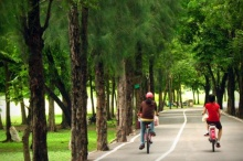 สวนวชิรเบญจทัศ สวนแห่งครอบครัวกลางเมืองกรุง