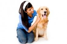 5 กลเม็ดเคล็ด (ไม่) ลับดูแลสุขภาพขนน้องหมา