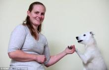 ฮอรัส สุนัขหูหนวกยอดอัจฉริยะสามารถทำตามคำสั่งจากภาษามือ 50 คำสั่ง