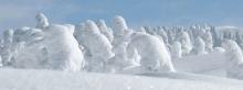 ทุ่งปิศาจน้ำแข็ง 'Snow monsters' of Japan เทือกเขาซาโอ้