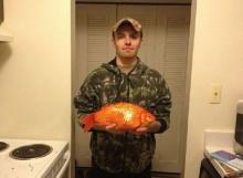 ตะลึง! จับปลาทองยักษ์ในทะเลสาบ หนักโลครึ่ง