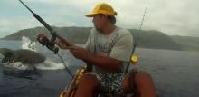 หนุ่มนักตกปลาเหวอ ฝูงฉลามว่ายแย่งเหยื่อจากเบ็ดต่อหน้า