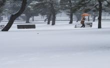 รวมภาพพายุหิมะถล่มหนักที่ญี่ปุ่น
