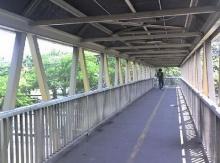 แชร์สนั่น!! คนไทยโดนหลอกให้ใช้สะพานลอย ทั้งๆที่เมืองนอกไม่จำเป็น?