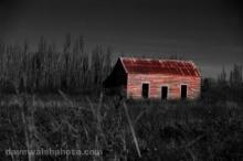 คดีฆาตกรรมในโรงนาสีแดง (Red Barn Murder)