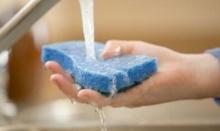นักวิชาการเตือน ! ฟองน้ำล้างจานเป็นแหล่งเชื้อโรค