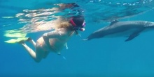 เหลือเชื่อ!! สาวท้องแก่ เตรียมคลอดลูกในทะเล ให้ โลมา เป็นผู้ช่วย!!!(มีคลิป)