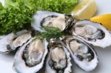 ทำไมเทศกาลกินเจบางคนถึงบอกว่ากินหอยนางรมได้