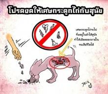 อันตรายนะ!! เตือนงดให้เศษกระดูกไก่กับน้องหมา!!