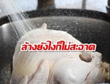 งานวิจัยชี้! ล้างไก่ไม่ได้ทำให้สะอาด และคุณอาจจะป่วยได้! เพราะเชื้อแบคทีเรีย