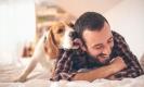 4 วิธีฝึกน้องหมาอย่างไรให้เชื่อฟัง