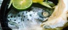 ซุปหัวปลา (อุชิโอะ จิรุ)