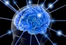 เพาะเซลล์สมองฟื้นความจำ