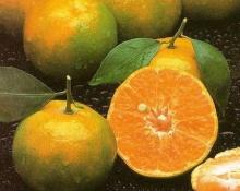 พบสารในเปลือกส้มเขียวหวาน มีฤทธิ์ทำลายเซลล์ มะเร็ง