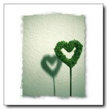 ไออุ่นที่หายไป .. จากหัวใจคนรักกัน