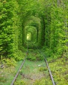 อุโมงค์แห่งความรัก อุโมงค์รถไฟที่โรแมนติกที่สุดในโลก