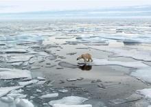 ตะลึงน้ำแข็งขั้วโลกละลายเร็ว!