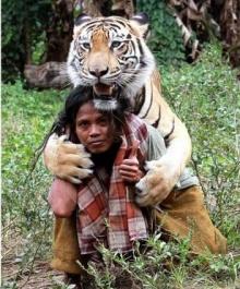 มิตรภาพระหว่างมนุษย์กับเสือเบงกอล