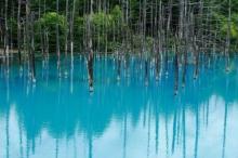 ความสวยงามเกินบรรยาย บึงน้ำสีฟ้า  ในญี่ปุ่น