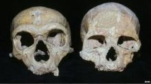 มนุษย์โบราณนีแอนเดอร์ทัลสูญพันธุ์ เพราะดวงตาใหญ่เกินไป