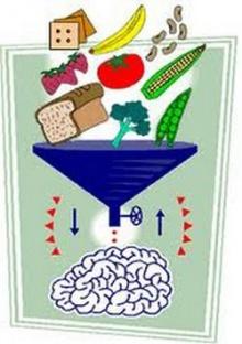 มาใส่ใจ สมอง ด้วยอาหารกันเถอะ