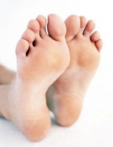 ผลการศึกษาพบเท้าเป็นแหล่งรวมของเชื้อราเกือบ 200 ชนิด