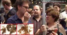 คนอังกฤษตื่นเต้นได้ลิ้มลองเมนูแมลง