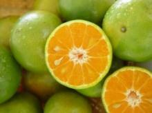 สูตรมาร์คหน้าด้วยส้มเขียวหวาน