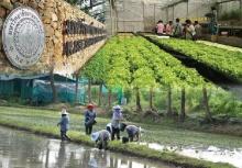ม.เกษตรศาสตร์ ติดอันดับ 48 จัดอันดับมหา′ลัยโลก-ที่ 1 ประเทศไทย 2 ปีซ้อน