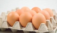 รู้หรือไม่!! ไข่ไก่สามารถเก็บได้เป็นปี