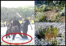 ดังอีกแล้วนะครัช!!นักท่องเที่ยวไทย ลุยสวนดอกไม้ ยืนเซลฟี่ซ่ะงั้น??(มีคลิป)