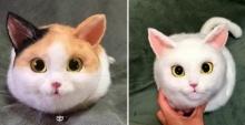 เหมือนเกิ๊น!! กระเป๋าแมวสุดฮิตในญี่ปุ่น..ในราคาที่แบรนด์เนมยังต้องชิดซ้าย!!