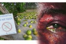 สยองอย่าได้เดินเฉียดใกล้!! ต้นไม้ที่ขึ้นชื่อว่าอันตรายที่สุดในโลก