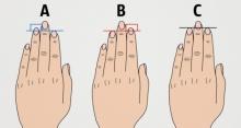 ความยาวของนิ้วมือสามารถบอกลักษณะนิสัยของคุณได้