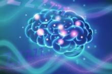 สมองควบคุมการนอนหลับได้อย่างไร?