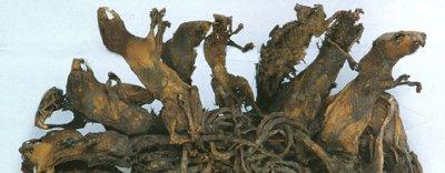 อันดับ 1 กษัตริย์หนู (Rat King) - ยุโรป