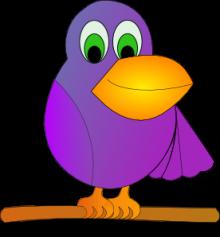 ขำขัน : นกแก้ว