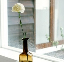 เคล็ดลับ ทำให้ดอกไม้ในแจกันให้อยู่ได้นาน