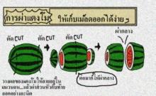 เคล็ดลับ: การผ่าแตงโมให้เหลือเมล็ดน้อยที่สุด!