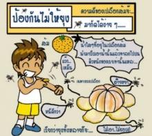 เปลือกของส้ม !...นำมาใช้แทนยากันยุงได้