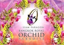 งานไม้ดอกไม้ประดับ  Bangkok Royal Orchid Paradise