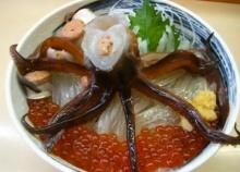 ซาชิมิ เมนูมีชีวิตสุดสยองจากญี่ปุ่น