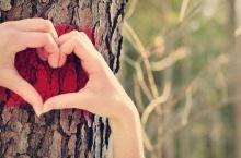 ทำไมความรักทำให้หัวใจแข็งแรง