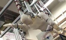 ยุ่นสร้างหุ่นยนต์ว่ายน้ำหน่วยกู้ภัยชายฝั่งแห่งอนาคต