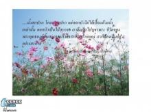 พรธรรมนำชีวิต (2)