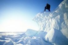 พืชบุกอาร์กติกเหตุโลกร้อน